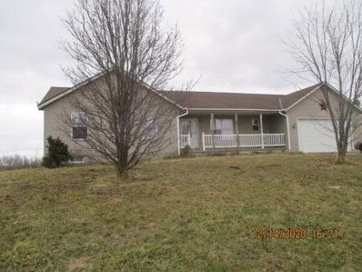 4111 County Road 61, Mount Gilead, OH 43338 - #: 220043506