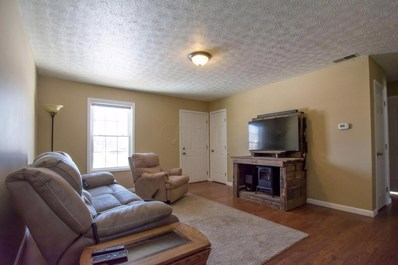 411 Riverview Road, Williamsport, OH 43164 - #: 221003603