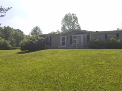 16362 Pine Valley Drive, Sterling Twp, OH 45176 - #: 1584929