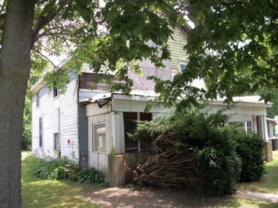 10130 Pleasant Plain Road, Pleasant Plain, OH 45162 - #: 1588874