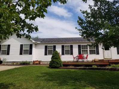 16360 Pine Valley Drive, Sterling Twp, OH 45176 - #: 1591057