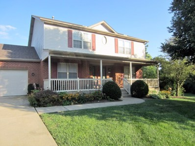 4710 Ouray Court, Liberty Twp, OH 45011 - #: 1594510