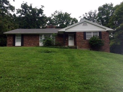 6031 Crittenden Drive, Anderson Twp, OH 45244 - #: 1596118