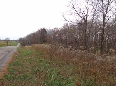 Current Road, Sunfish Twp, OH 45661 - #: 1596693