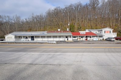 2836 Us Rt 52, Chilo, OH 45120 - #: 1604105