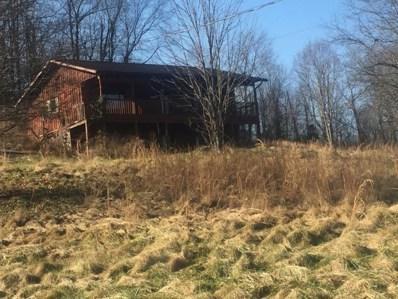 20 Chamberlin Road, Wheelersburg, OH 45694 - #: 1607749