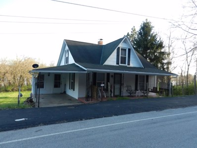 5 Columbia Street, Higginsport, OH 45121 - #: 1617395
