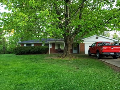175 Apgar Lane, Owensville, OH 45160 - #: 1661105