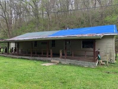 4961 Miller Run Fallen Timber Road, Jefferson Twp, OH 45653 - #: 1661481