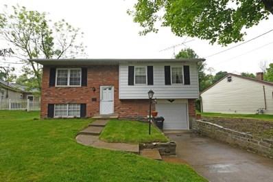 245 Goodrich Lane, Cincinnati, OH 45233 - #: 1663202