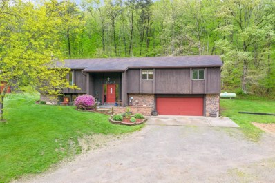 1047 Coon Hollow Road, Valley Twp, OH 45648 - #: 1700140