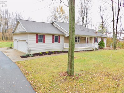 2858 State Route 20, Collins, OH 44826 - #: 20195302
