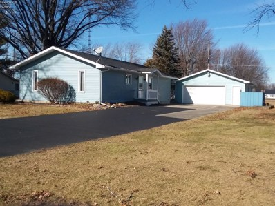 13 Beeghly Avenue, Bloomville, OH 44818 - #: 20200469