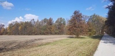 Township Road 165, Other, OH 45836 - #: 20204693