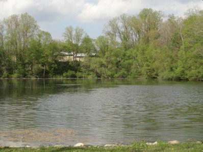 0 Quarry Ct., Lot #121, Chesterville, OH 43317 - #: 9029545