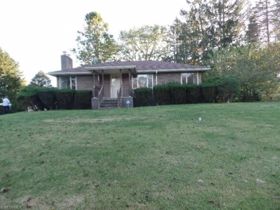 9352 State Route 43, East Springfield, OH 43925 - #: 3850733