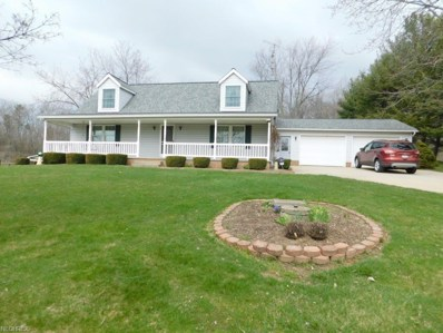 18087 Dover Road, Mount Eaton, OH 44659 - #: 3997886