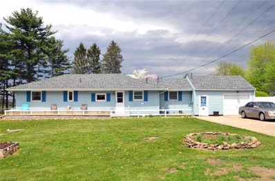 48542 Telegraph Road, Amherst, OH 44001 - #: 3998002