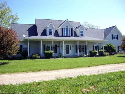 48799 Telegraph Road, Amherst, OH 44001 - #: 4000832