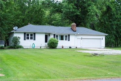 48712 Russia Road, Amherst, OH 44001 - #: 4008639
