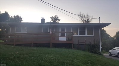 54981 Lawvers Drive, Bridgeport, OH 43912 - #: 4015392