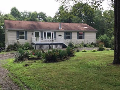 40200 State Route 800, Woodsfield, OH 43793 - #: 4015966