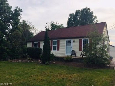 11538 Indian Hollow Road, Grafton, OH 44044 - #: 4026254