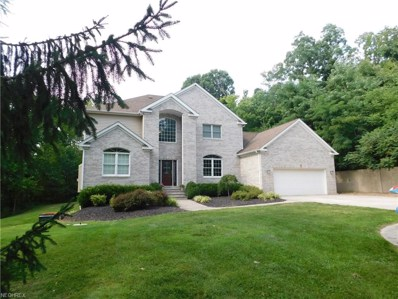 49626 Telegraph Road, Amherst, OH 44001 - #: 4030939