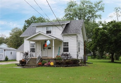 410 Church Street, South Amherst, OH 44001 - #: 4040808