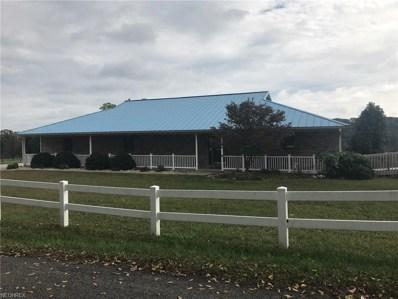1249 Barrett South Road, Vincent, OH 45784 - #: 4041836