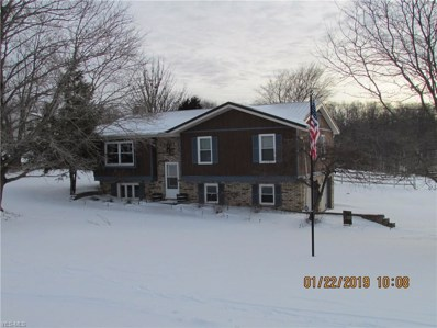 351 Township Road 262, Bloomingdale, OH 43910 - #: 4051162