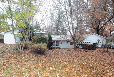 9990 East Pike, Norwich, OH 43767 - #: 4052447