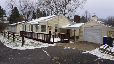 3175 State Route 43, Brimfield, OH 44260 - #: 4055873