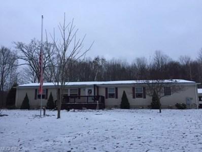 6500 Creek Road, Andover, OH 44003 - #: 4057775