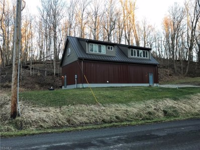 50765 White Hill (Tr 282) Road, St. Clairsville, OH 43950 - #: 4059435