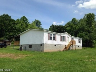 36846 State Route 124, Middleport, OH 45760 - #: 4066864