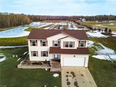 5732 Hayes Road, Andover, OH 44003 - #: 4067647