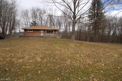 10876 W Western Reserve Road, Canfield, OH 44406 - #: 4078026