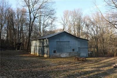 13625 Township Road 215, Big Prairie, OH 44611 - #: 4082083