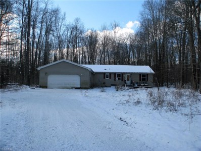4910 New Hudson Road, Orwell, OH 44076 - #: 4082213