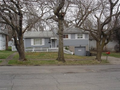 478 Camden Avenue, Youngstown, OH 44505 - #: 4084998