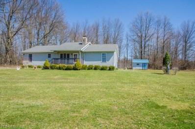 3090 State Route 14, Rootstown, OH 44272 - #: 4085147