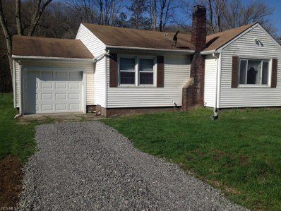 11808 State Route 43, Amsterdam, OH 43903 - #: 4086703