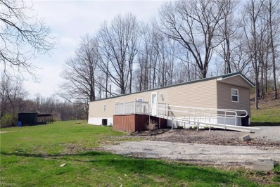 48175 Horn Ridge Road, Caldwell, OH 43724 - #: 4092855