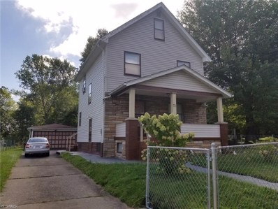 71 N Loveless Avenue, Youngstown, OH 44506 - #: 4093057