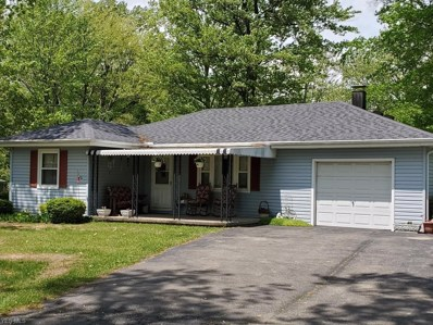 48592 Russia Road, Amherst, OH 44001 - #: 4101946