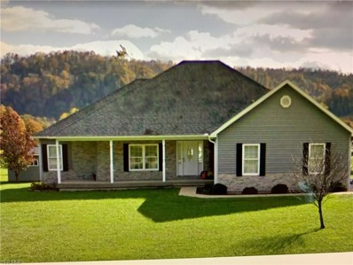 37682 State Route 7, Sardis, OH 43946 - #: 4102409