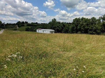 1970 Gold Ring Road, Sistersville, WV 26175 - #: 4107536