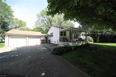 3153 Center Road, Perry, OH 44081 - #: 4110167
