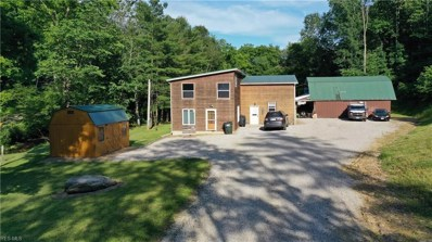 13698 State Route 520, Glenmont, OH 44628 - #: 4110384